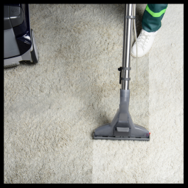 Carpet Steamer